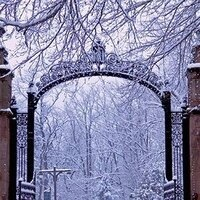 The MHC gates in winter