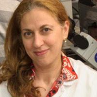 Neuro-Oncology Program