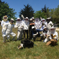 CANCELED: Introduction to Honeybees and Beekeeping