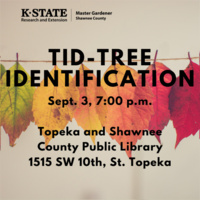 TID-Tree Identification