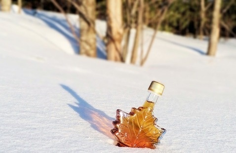 Maple syrup in snow