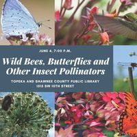 Wild Bees, Butterflies and Other Insect Pollinators