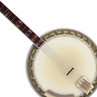 Photo of a banjo.