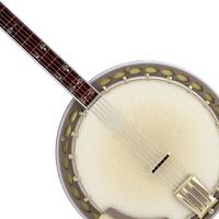 Photo of a banjo.