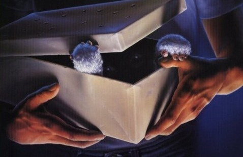 Film Board Presents: Gremlins