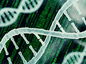 Bulk RNA-Seq