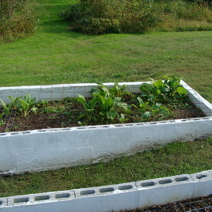 CANCELLED-Building a Permanent Raised Bed