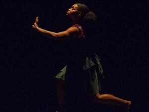 CANCELED: WUDance Collective: 'Panorama'