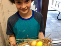 Budding Artists: Botanical Nests and Eggs