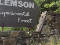 Clemson Experimental Forest Tours