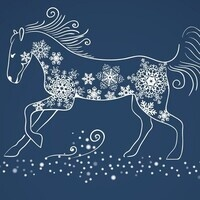 Winter Equine Meeting - Anderson County