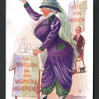Picturing the Public Arguments Against Woman Suffrage