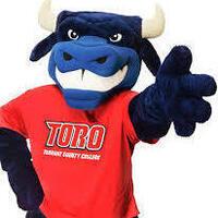 Where's Toro?