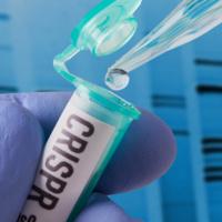 CANCELED: Lee and Nile Albright Annual Symposium – CRISPR: Revolutionizing the Future of Health