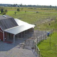 National Alpaca Farm DayOpen House