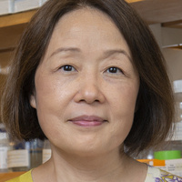 Insights into Alzheimer's and Parkinson's diseases from genetic approaches
