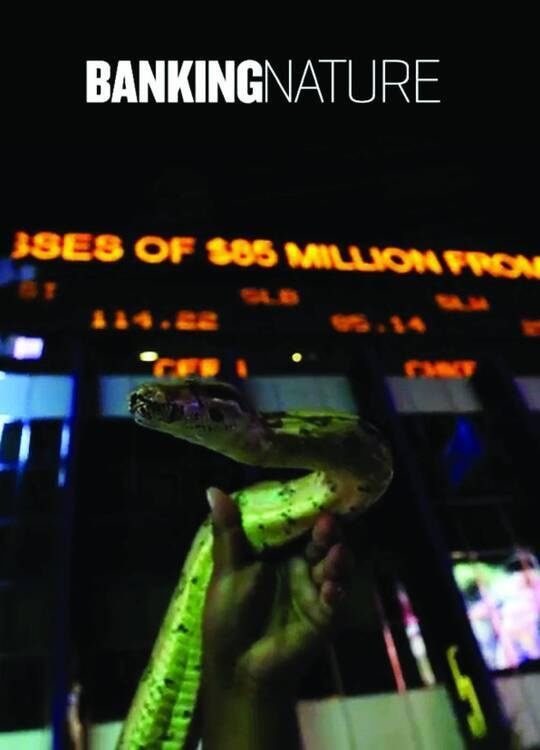 Banking Nature showing stocks and a snake.