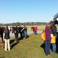 Horse Management Field Day (East Tennessee)