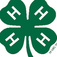 Kent County 4-H Favorite Foods Contest