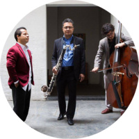 Patron of the Arts presents: Low-Frequency Trio