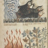 Everyday Apocalypse: The Poetry of Climate Change in the Late Middle Ages