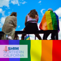 Diversity, Equity & Inclusion in Action: Learning from LGBTQ + I (SHRM)