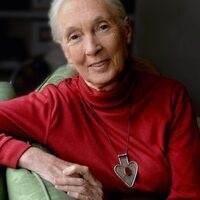 (CANCELED) Dr. Jane Goodall