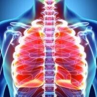 ADVANCES IN PULMONARY MEDICINE