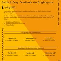Brightspace Workshop Flyer