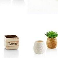 Plant Pottery Make and Take