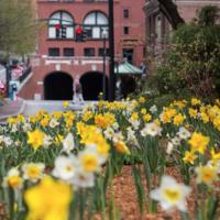 Spring 2020 Degree Program Classes Begin