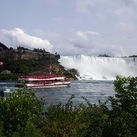 Niagara Wine, Falls, + Historic Sightseeing from Toronto