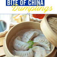 Bite of China: Dumplings