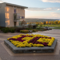 Updates from the Office of the Provost