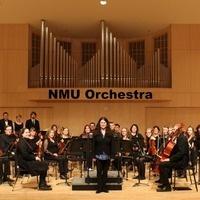 NMU Orchestra Children's Concert