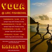 Iyengar Yoga with Tim Grundy