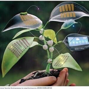 Physics & Astronomy Seminar: Towards Sustainable Electronics