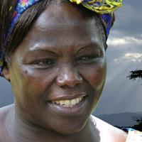 Taking Root, the vision of Wangari Matthai