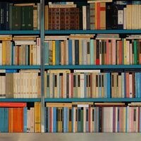 Blue-framed bookcase with colorful books