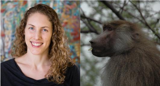 Primate photo credit - Larissa Swedell