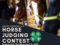 Open Registration for SC 4-H Horse Judging