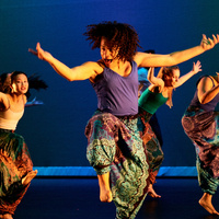 Panoramic Dance Project Dancers