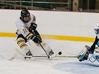 Men's Ice Hockey: Home Game v.s. St. John Fisher!
