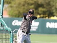 Bearkat Baseball