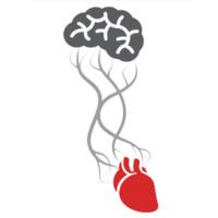 FAU Neuroscience Seminar Series: Can you feel the beat? Neurovisceral Integration in Health and Chronic Disease