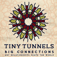 """EXHIBITION OPENING: """"Tiny Tunnels, Big Connections"""""""