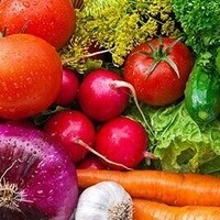 Nutrition During Chemotherapy