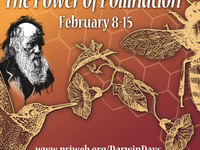 "Darwin Days Conservatory Tour: ""A World of Pollination Strategies"""