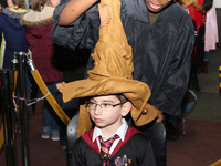 """Wizard"" in the Sorting Hat"