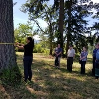 Participants in Tree School Lane 2018 measure a tree